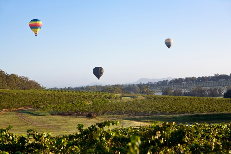 Hot air balloons flying over the vineyards. Hunter Valley, New South Wales, AUSTRALIA