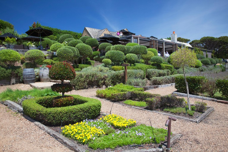 Mudbrick Vineyard and Restaurant, Waiheke Island, Auckland, North Island, New Zealand