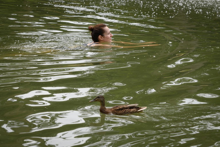 A woman swims past ducks in lake