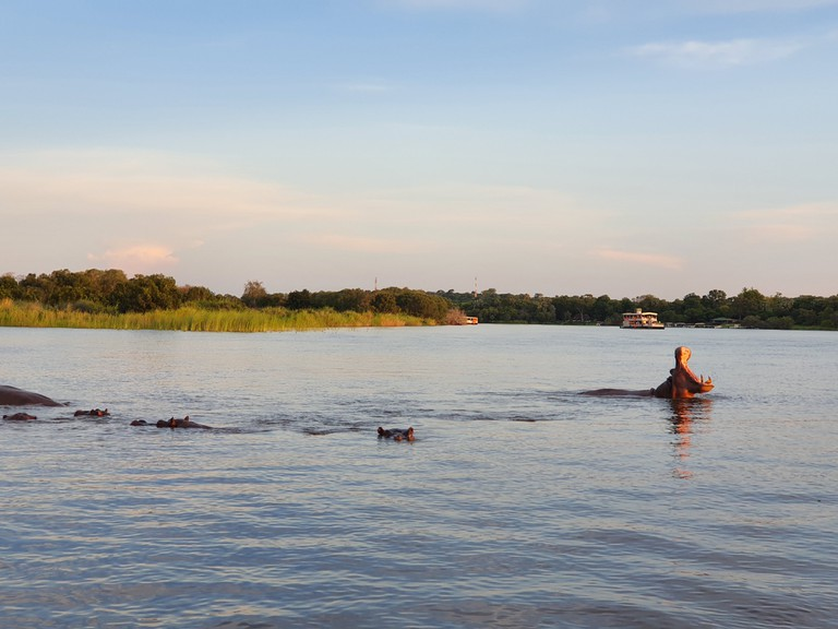 Zambezi River Sunset Cruise (3)