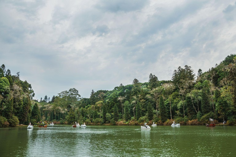 People having fun on fiberglass boats with the shape of swan at the Black Lake in Gramado. A cute european-influenced town in southern Brazil.