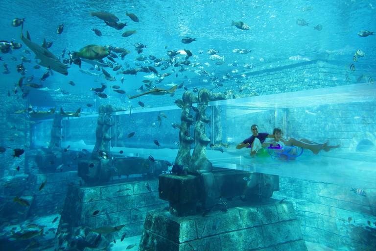 Aquaventure Waterpark 3