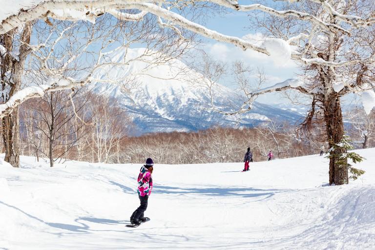 NISEKO, JAPAN - MARCH 10 : General view of people snowboarding on a tree-lined piste in the Niseko Grand Hirafu ski resort, Hokkaido, Japan on 10th Ma