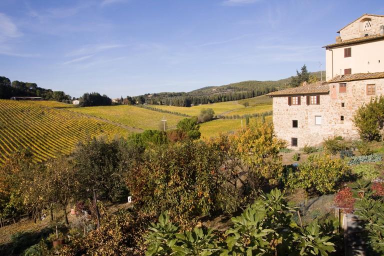 Italian countryside near siena, tuscany
