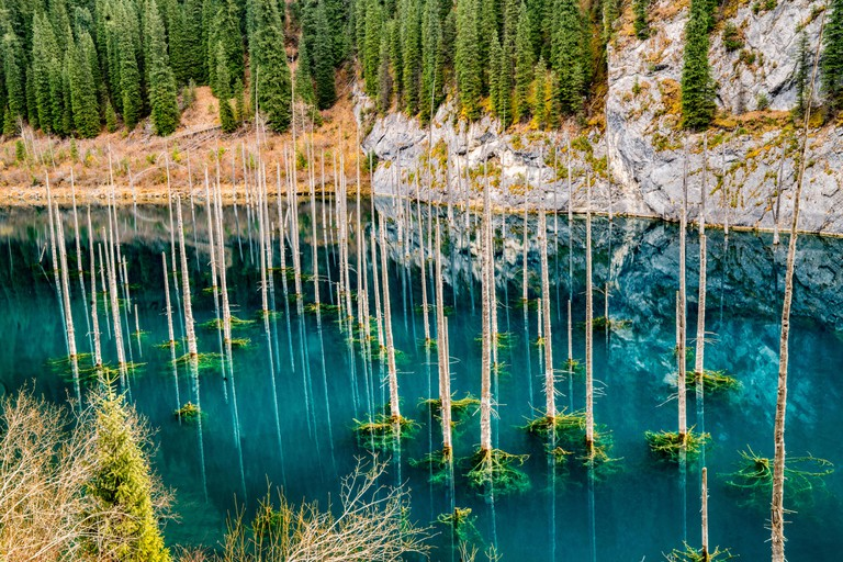 The Sunken Forest, Lake Kaindy, Kazakhstan, Central Asia, Blue glacial lake formed by 1911 earthquake.  Lake Kaindy National park