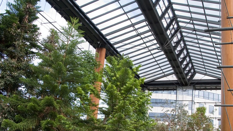Inside of greenhouse at Parc André Citroën