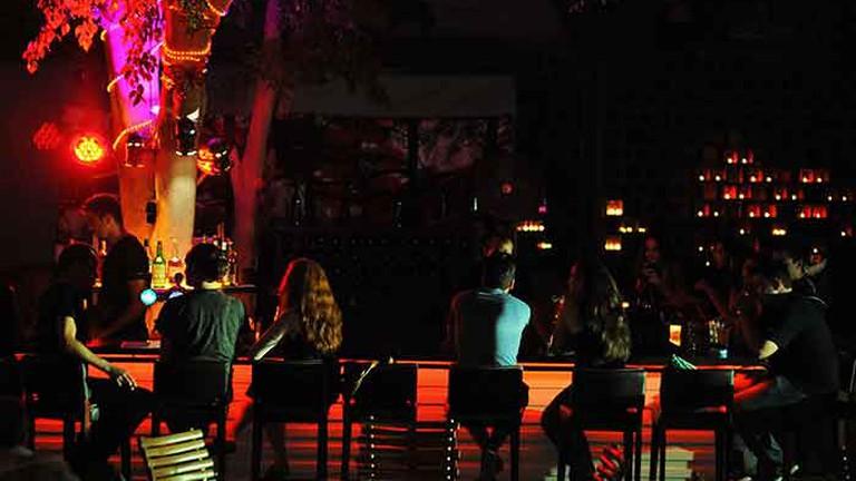 Nightlife under the Fichus tree at Barbasba