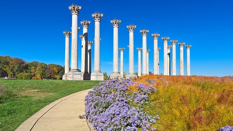 National Arboretum Columns