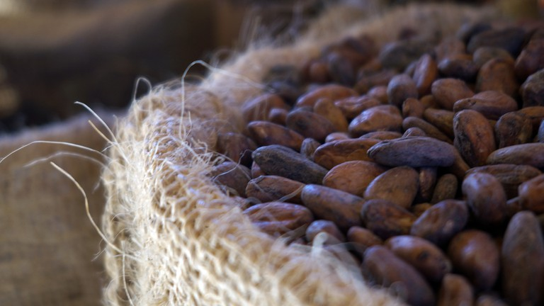 Cacao beans | © Giulian Frisoni/Flickr