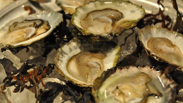 Oyster Diner