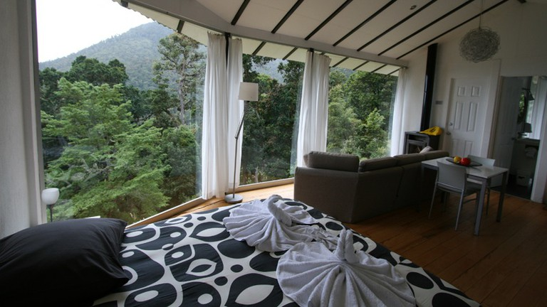 Surrounded by the cloud forest at Dantica