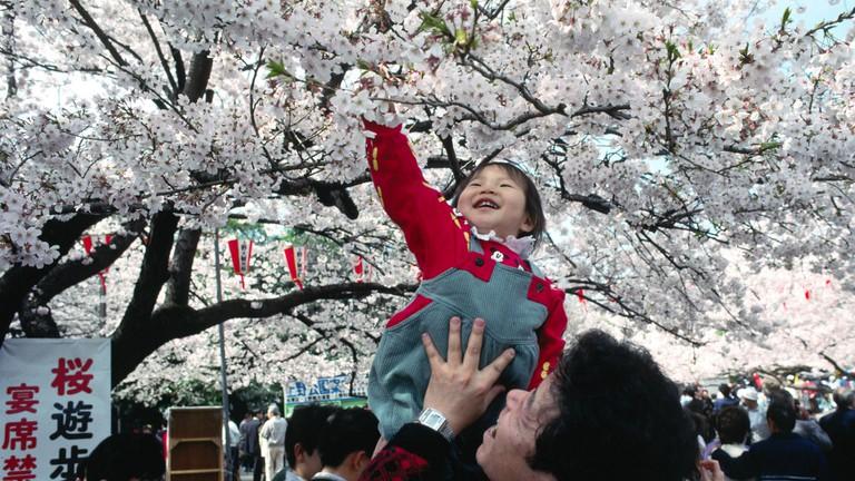 Springtime in Ueno Park