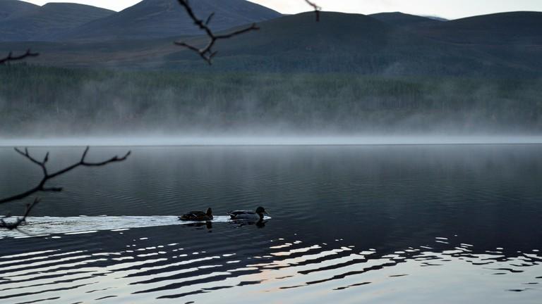 Loch Morlich Mist