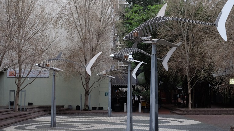 The 'Ghost Sharks' sculptures are in Cape Town's Foreshore