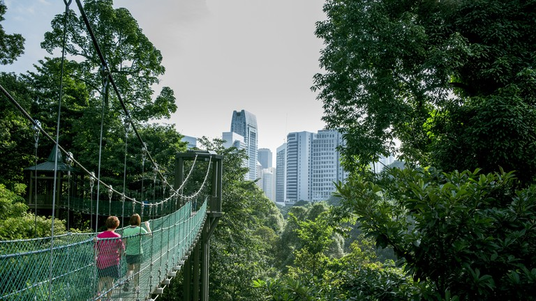 Walkways at the Kuala Lumper Eco Forest Park