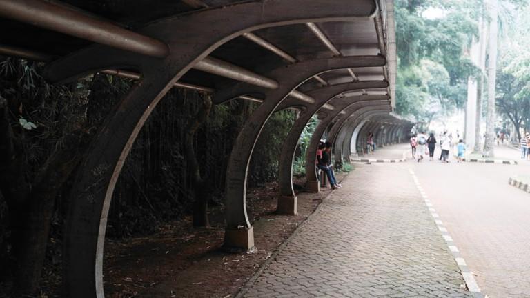 Ragunan zoo streets