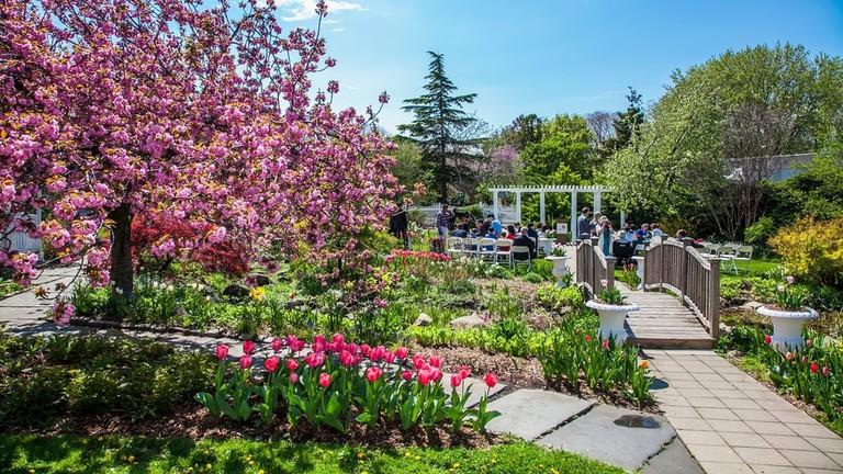 Queens Botanical Garden, New York
