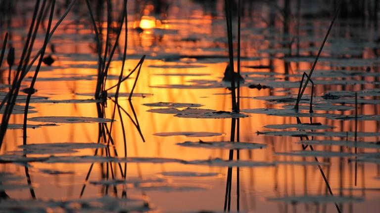 Sunset in Botswana CC0 Pixabay