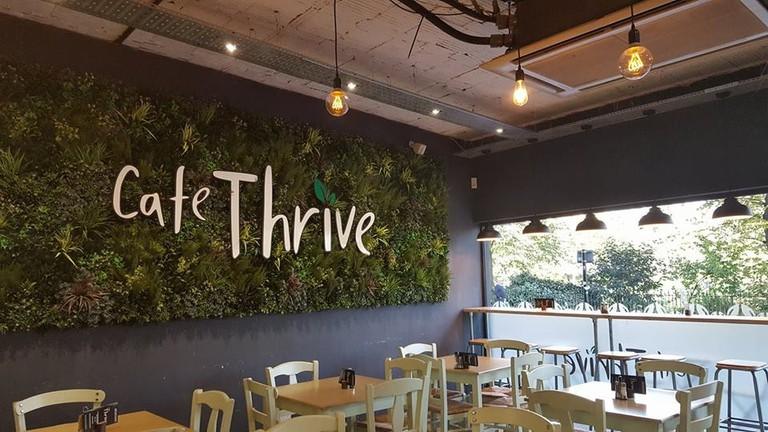 Cafe Thrive, Southampton