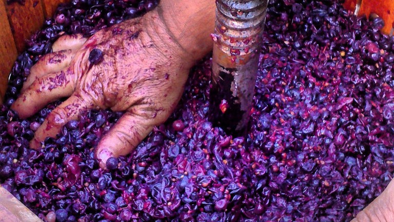 Making wine by hand