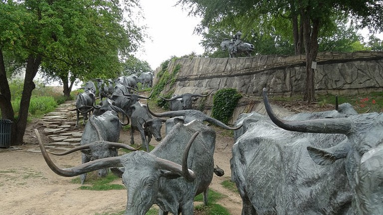 A herd of longhorn cattle sculptures are placed throughout Pioneer Plaza