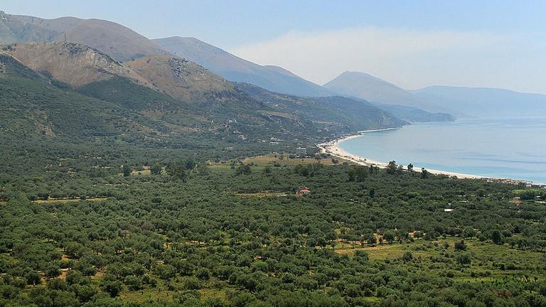 borsh-albania