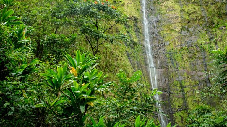 Waimoku Falls | © Thomas/Flickr