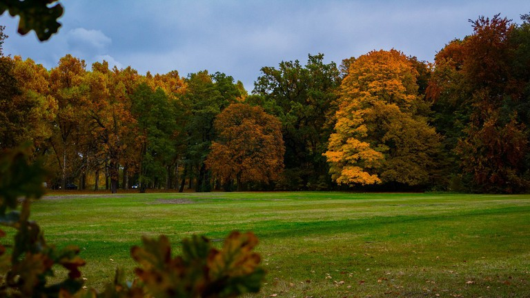 The beautiful colours of Treptower Park in autumn