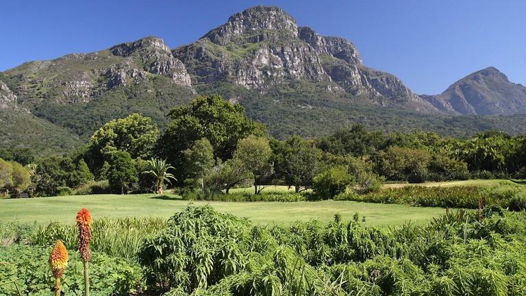 Kirstenbosch National Botanical Garden, Cape Town