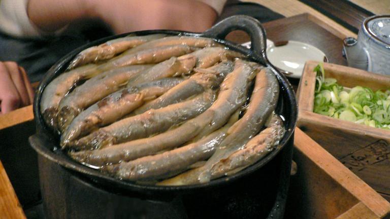 Loach hot pot at Komagata Dojo
