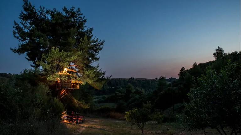kotsifas estate treehouse, Tsichleika