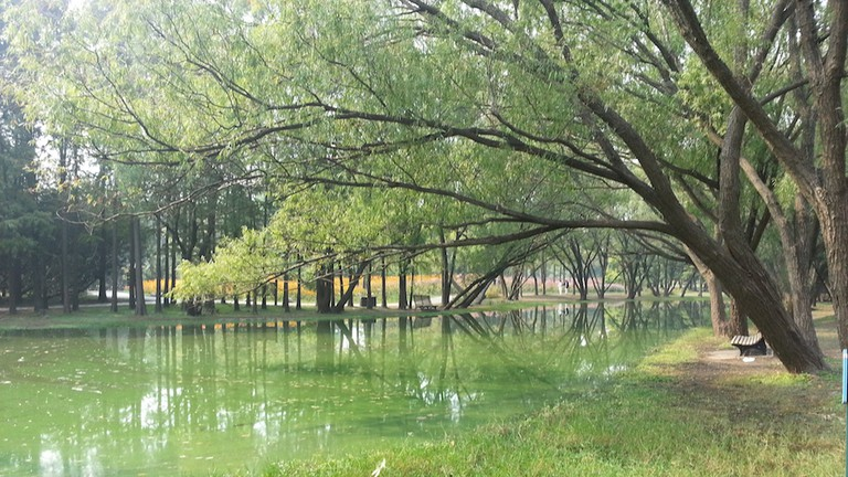 Shanghai, Gongqing Forest Park