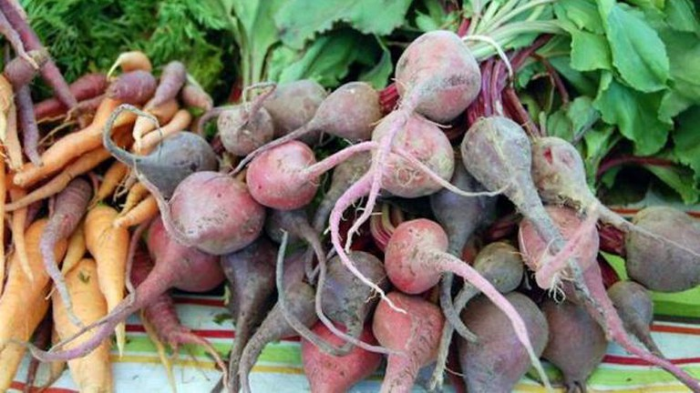 Fresh Invincible Summer Farms Heirloom Carrots And Beets