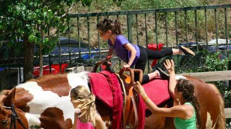 LA Equestrian Vaulting Club Clinic