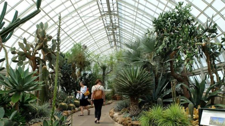 NYC 6.8 - New York Botanical Garden, The Bronx