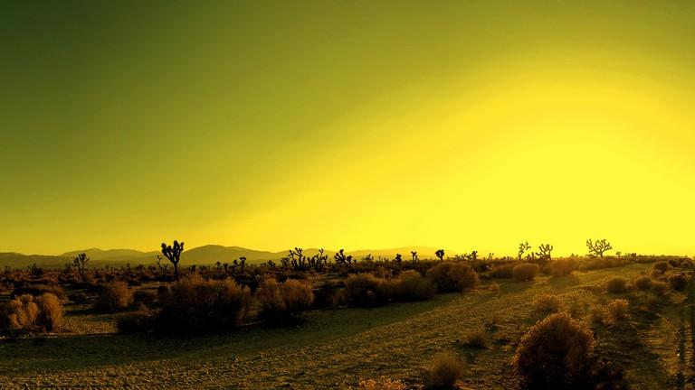 Landscape around Palmdale