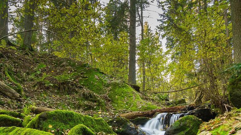 Åva, Tyresta nationalpark