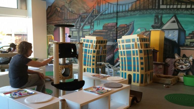 Cat Town Café - Oakland, CA