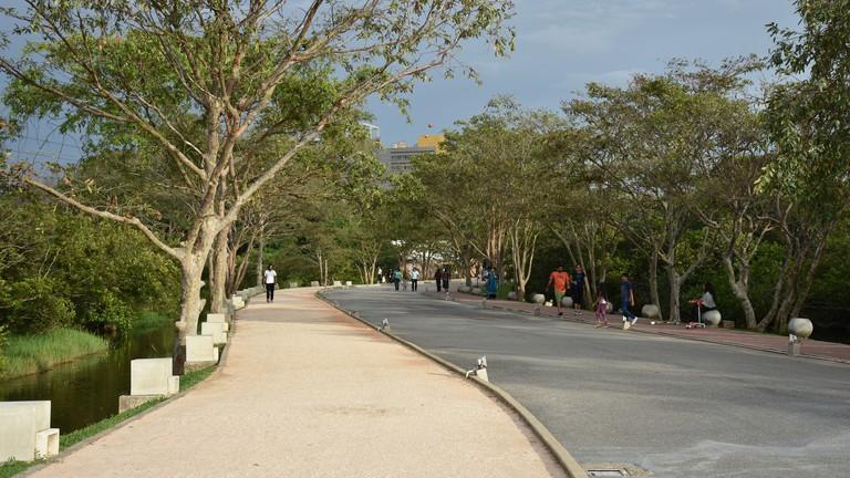 Diyatha Uyana walking paths