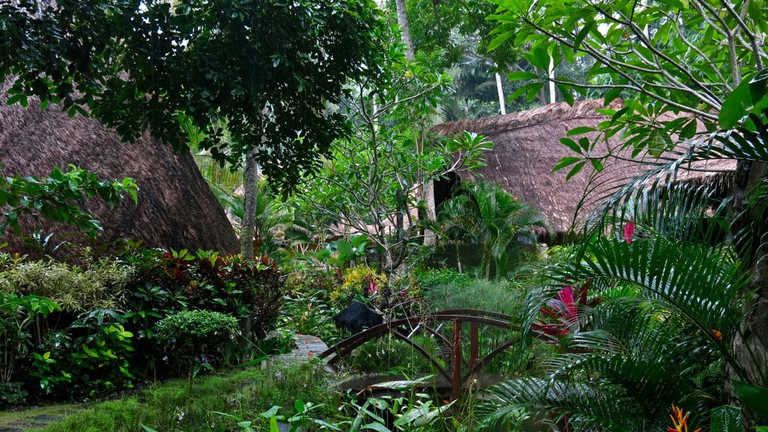 The lush garden at Fivelements in Bali