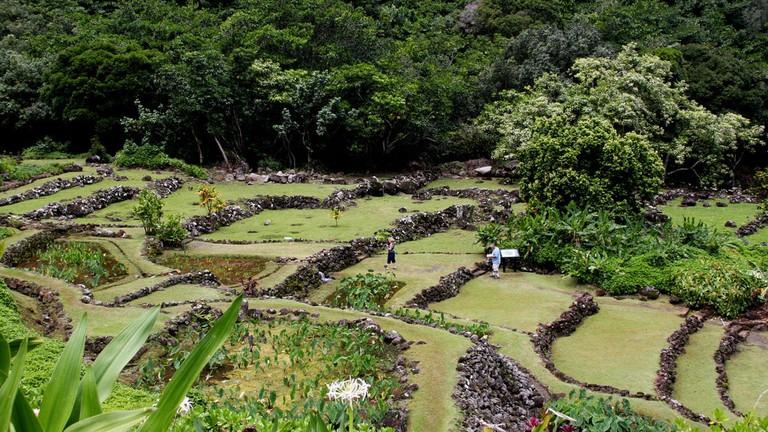 Limahuli Garden | © Anissa Wood/Flickr