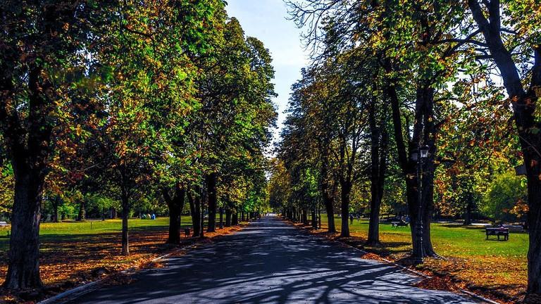 Борисовата_градина