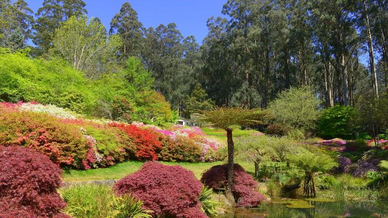 Dandenong Ranges Botanic Garden © Chris Phutully / Flickr