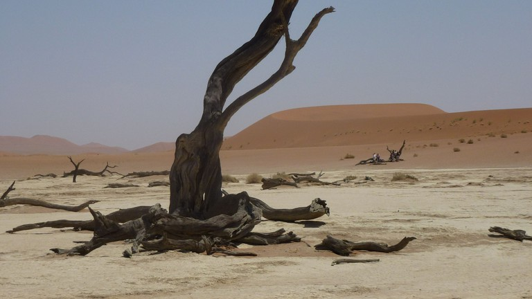 The surreal beauty of Deadvlei
