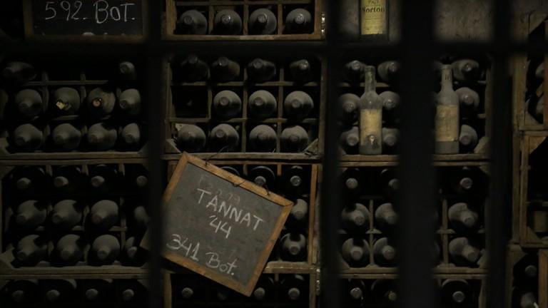 The cellars in the Trapiche bodega, Mendoza