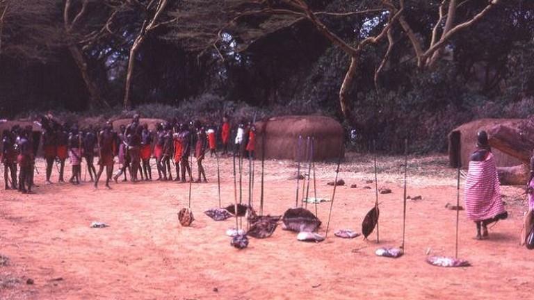 Maasai Shiled