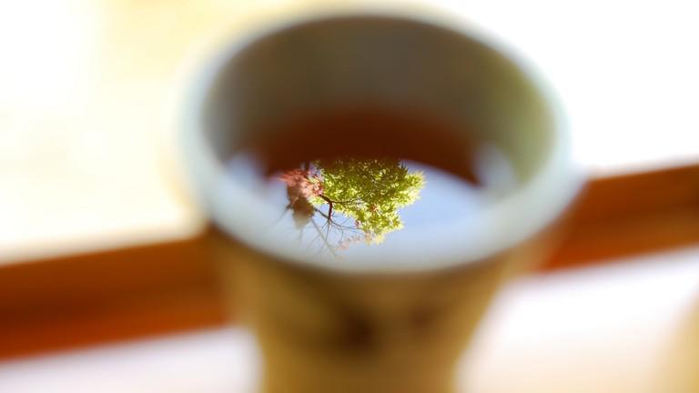 Maple tea © きうこ / Flickr