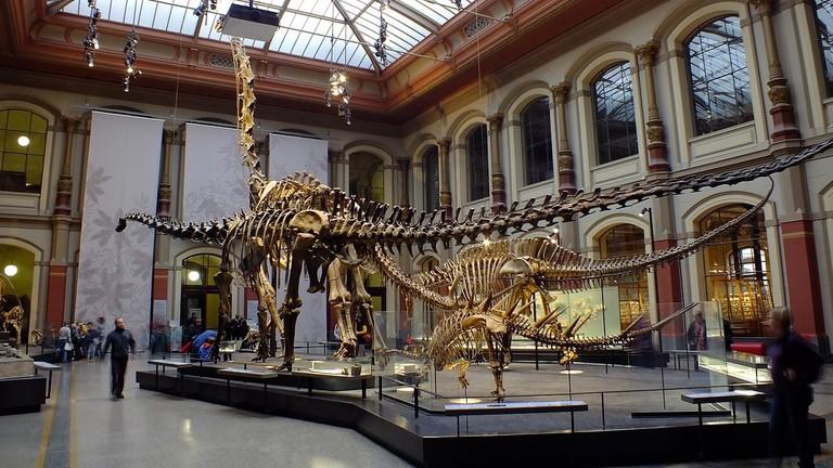museum-1737987_1280