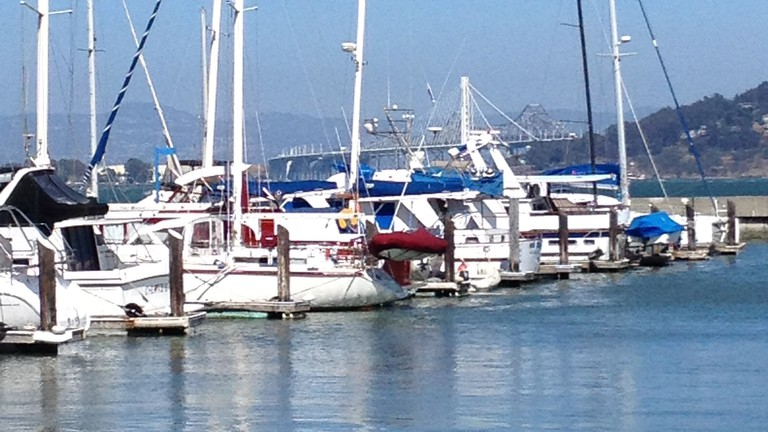 Boats in the Marina at Fort Mason
