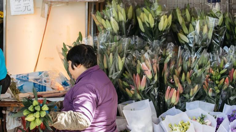 sctp0099-lo-hong-kong-flower-00056-682x1024